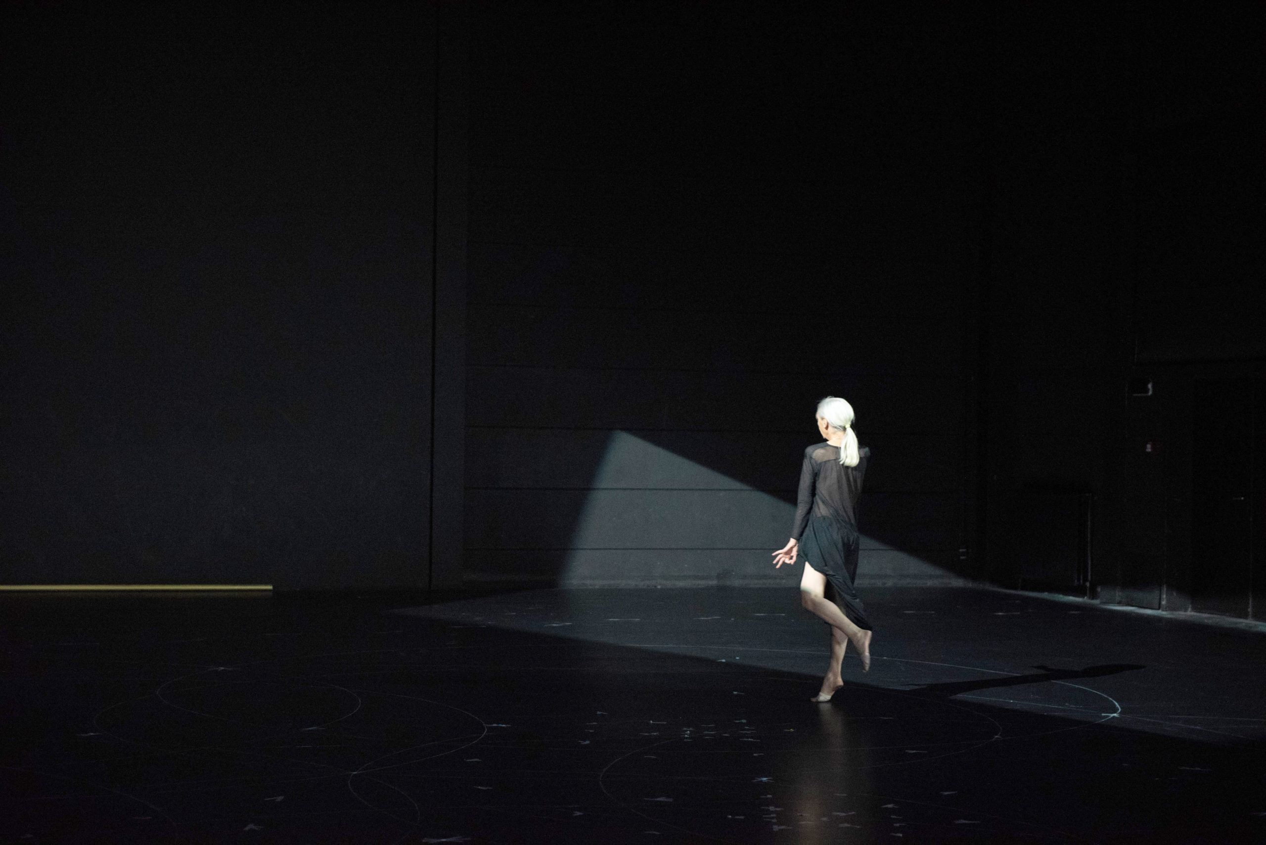 The Goldberg Variations (c) Anne Van Aerschot1